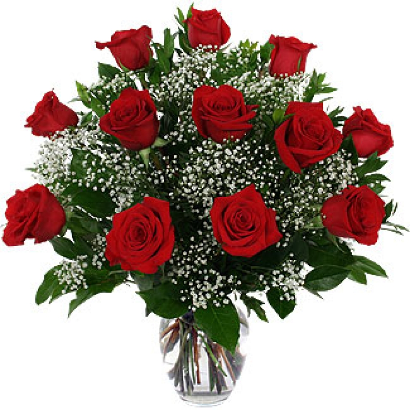 Red And White Flowers Meaning Flowers Healthy